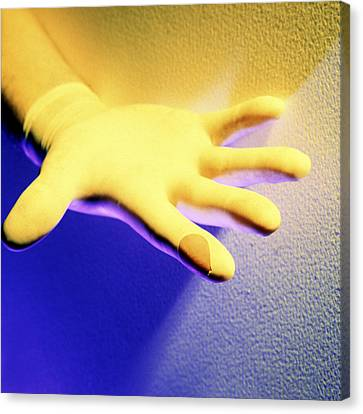 Surgical Glove Canvas Print by Johnny Greig