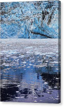 Surprise Glacier Canvas Print by Rick Berk