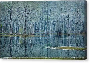 Surreal Blue Canvas Print