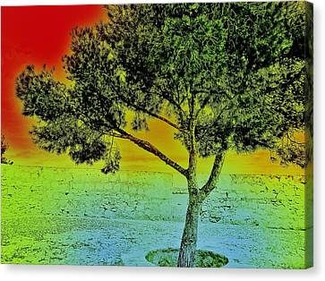Stone Path Canvas Print - Surreal Tree I. by Marianna Mills