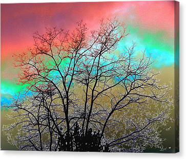Surreal Winter Sky Canvas Print by Will Borden