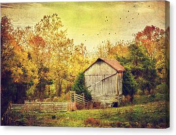 Surrounded By Fall Canvas Print by Kathy Jennings