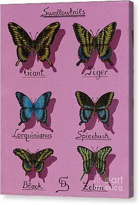 Swallowtails Canvas Print by Dumitru Sandru