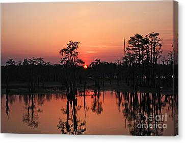 Canvas Print featuring the photograph Swamp Sunset by Luana K Perez