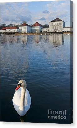 Swan At The Palace Canvas Print by Andrew  Michael