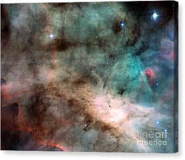 Swan Nebula Canvas Print by Space Telescope Science Institute / NASA
