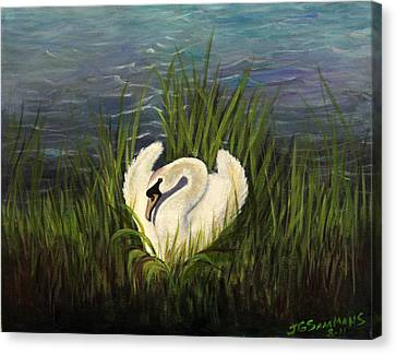 Canvas Print featuring the painting Swan Nesting by Janet Greer Sammons
