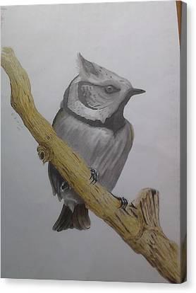 Swedis Birds Canvas Print by Per-erik Sjogren