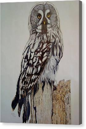 Swedish Uwl Canvas Print by Per-erik Sjogren