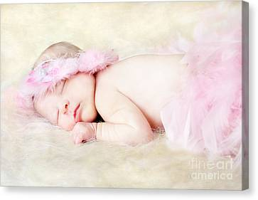 Flower Pink Fairy Child Canvas Print - Sweet Baby Girl by Darren Fisher