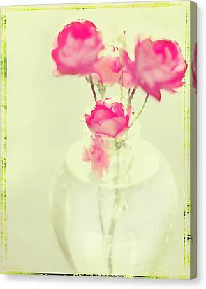 Sweet Fairy Rose Canvas Print