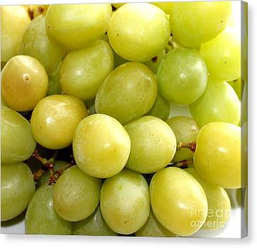 Sweet Green Grapes Canvas Print by Barbara Griffin