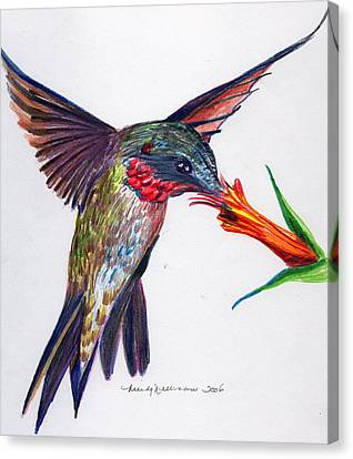 Sweet Nectar Canvas Print by Mindy Newman