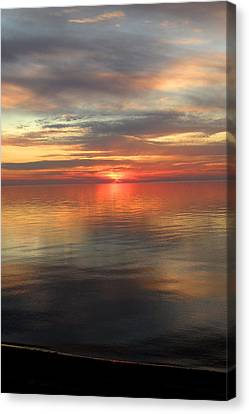 Sweet Solitude Canvas Print by Cyryn Fyrcyd