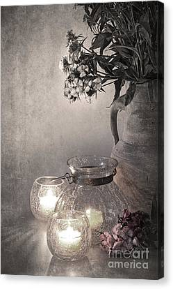 Sweet Williams Sepia Canvas Print by Jane Rix