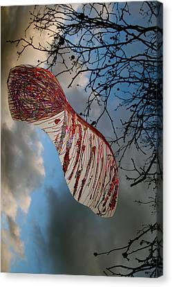 Sycamore More Canvas Print by Jez C Self