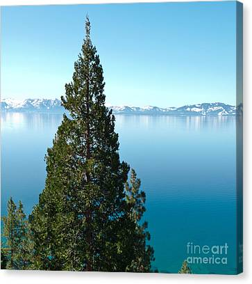 Tahoe Tranquility Canvas Print