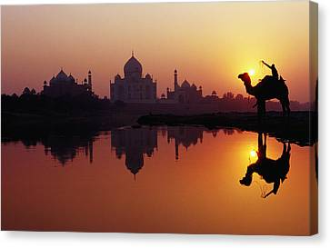 Taj Mahal & Silhouetted Camel & Reflection In Yamuna River At Sunset Canvas Print by Richard I'Anson
