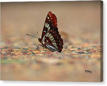 Canvas Print featuring the photograph Taking A Breather by Patrick Witz