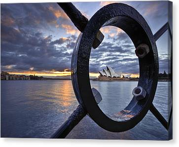 Taking Centre Stage Canvas Print by Renee Doyle