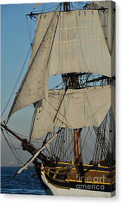 Tall Ship   Canvas Print by Timothy OLeary