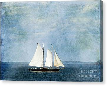 Canvas Print featuring the photograph Tall Ship by Alana Ranney