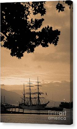 Tall Ship Gorch Fock Canvas Print by Gaspar Avila
