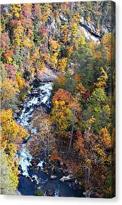 Tallulah River Gorge Canvas Print by Susan Leggett