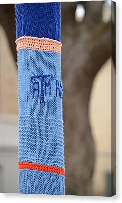 Tamu Astronomy Crocheted Lamppost Canvas Print by Nikki Marie Smith