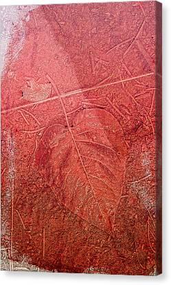 Tangerine Tango Heart Canvas Print by Bonnie Bruno