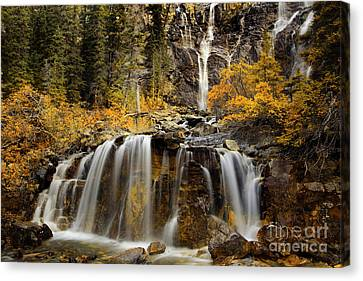 Long Bed Canvas Print - Tangle Falls, Jasper National Park by Keith Kapple