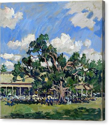 Tanglewood Shade Canvas Print by Thor Wickstrom