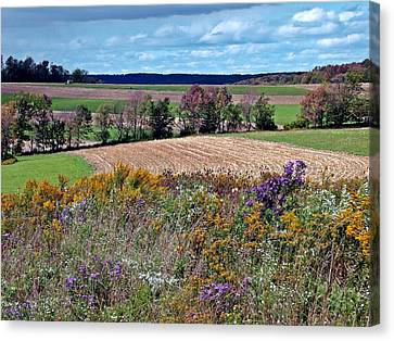Canvas Print featuring the photograph Tapestry by Christian Mattison