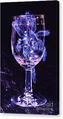 Tarantula On Wine Goblet Canvas Print by Janeen Wassink Searles