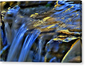 Taylor Waterfall Canvas Print by David Clark