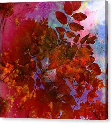 Tears Of Leaf  Canvas Print by Jerry Cordeiro