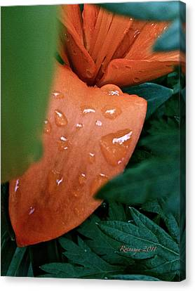 Tears Canvas Print by Rotaunja