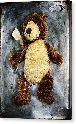 Teddy Bear Canvas Print by Skip Nall