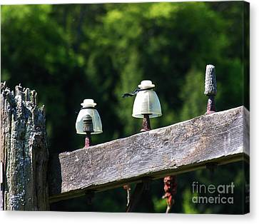 Canvas Print featuring the photograph Telephone Pole And Insulators by Sherman Perry