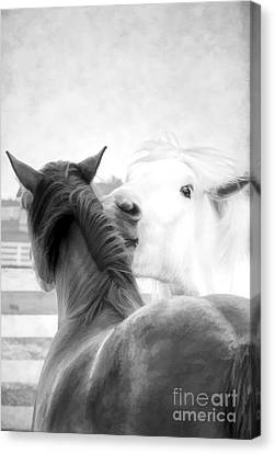 Telling Secrets In Black And White Canvas Print