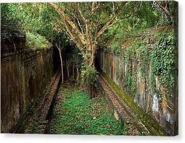 Temple Overgrown By The Jungle Canvas Print by Artur Bogacki