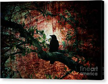 Tempting Fate Canvas Print by Andrew Paranavitana
