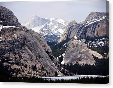 Tenaya To Conness Canvas Print by Michael Courtney