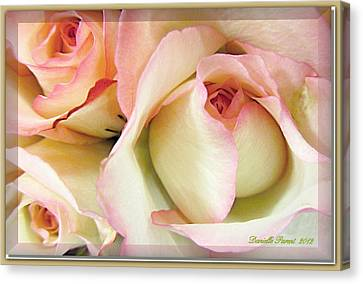 Tenderdly  Rose Canvas Print by Danielle  Parent