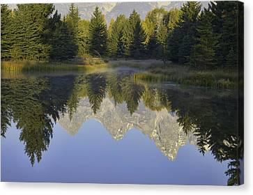 Teton Morning Reflections Canvas Print