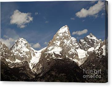 Teton Tips Canvas Print by Living Color Photography Lorraine Lynch
