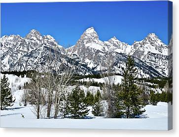 Teton Winter Landscape Canvas Print by Greg Norrell