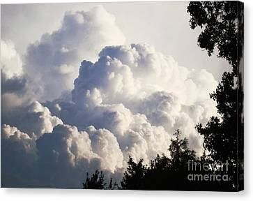 Texas Afternoon Sky Canvas Print by Denise Hopkins