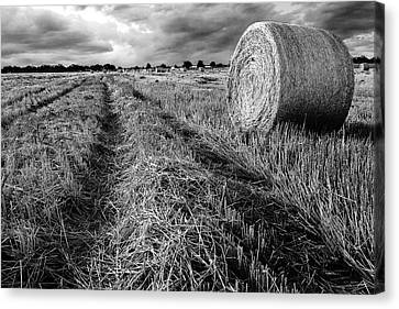 Texas Hill Country Hay Field Canvas Print by Paul Huchton