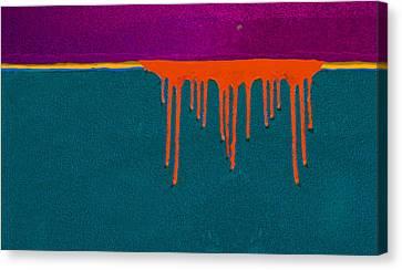 Texas Sunset Canvas Print by David Clanton